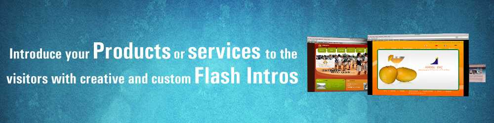 flash intros to websites