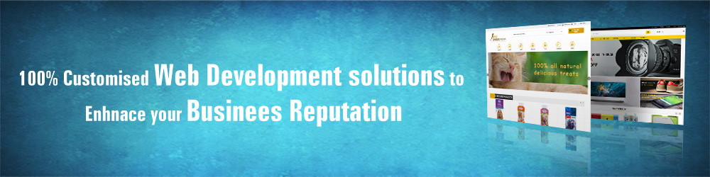 web application development in Coimbatore